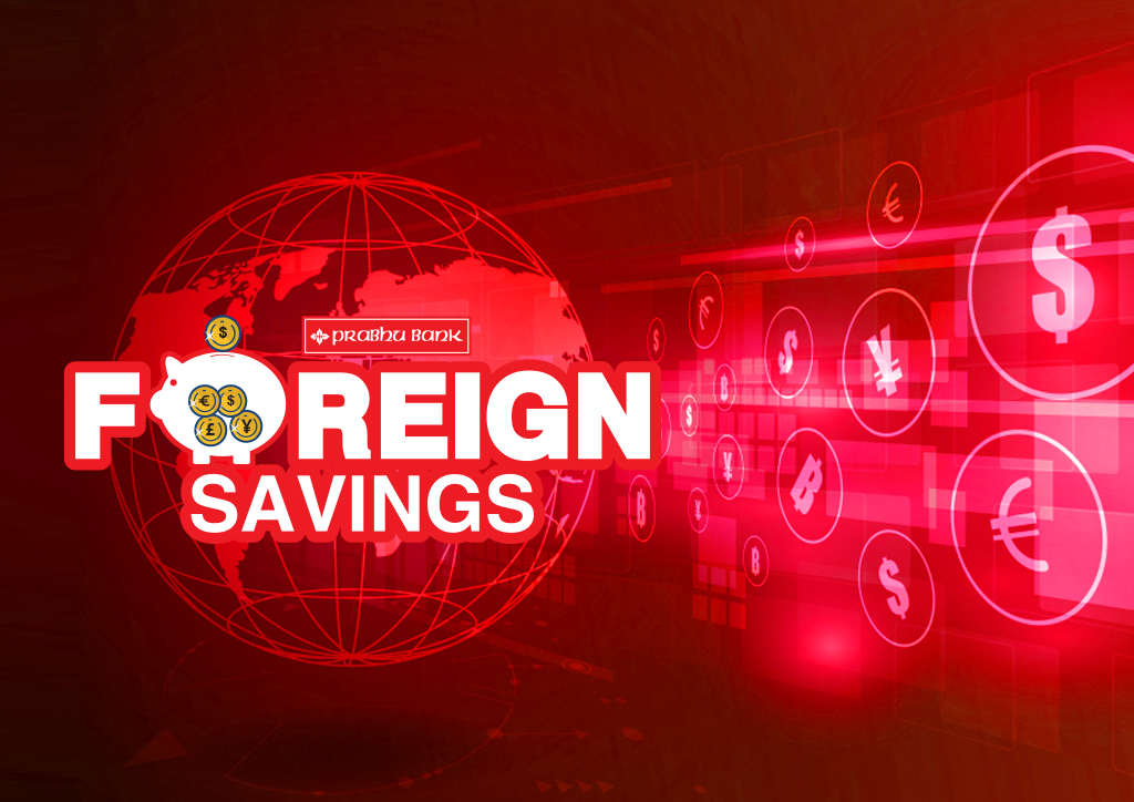 Foreign Savings